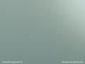 PLEXIGLAS® GS grün 6C77 GT