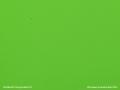 PLEXIGLAS® GS grün 6H02 GT