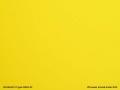PLEXIGLAS® XT gelb 1N870 GT