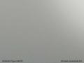 PLEXIGLAS® XT grau 7A670 GT